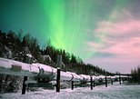 Fairbanks-Evening Aurora Viewing Tour