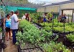 South Shore Combination Garden Guided Tour
