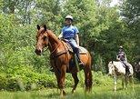 Horseback Riding Tour of Punta Cana
