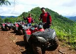 Wildlife ATV Driver 3 hr 30 km Q3