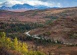 Denali Backcountry Adventure