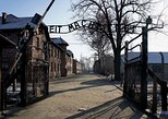Auschwitz-Birkenau and Salt Mine Full day tour