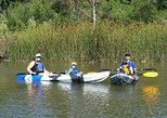 Napa River Kayak Tour of Oxbow Nature Preserve