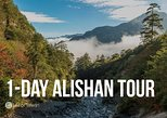 1-Day Private Tour of Alishan Mountain in Taiwan