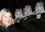 Moonlit Sanctuary Wildlife Conservation Park Evening Tour