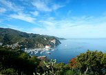 Catalina Island Day Trip from Anaheim or Los Angeles with Optional Upgrades