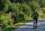 Coastal Fat-Tire Biking Tour in Anchorage