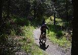 Fat Tire Biking Kincaid Park
