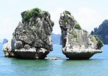Halong Dragon Daily Cruise