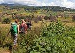 Nyaung Shwe Half Day Trekking