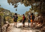 Mountains, Villages, and a Hidden Beach Day Tour from Palma