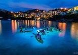 Night Kayak Tour in St. Thomas