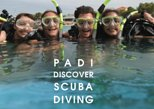 Watercolors - Discover Scuba Diving in Boracay