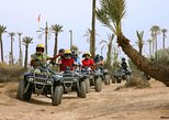 Sunset Tours quad biking and camel ride in the palm grove
