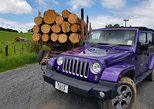 5-Hour Bay of Islands Private Jeep Expedition