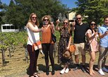 Small-Group Wine-Tasting Tour through North Sonoma County