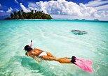Roatan Shore Excursion: Half-Day Reef Snorkeling Adventure
