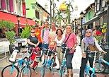 Lion City Bike Tour of Singapore