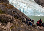 Balmaceda and Serrano Glaciers Sightseeing Cruise from Puerto Natales
