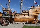 Punta Arenas Classic City Tour Including Nao Victoria Museum
