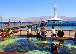 Admission Ticket: Underwater Observatory Marine Park