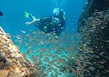 Fun Dives (Certified Divers)