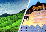 2 Day Tour to Kandy & Nuwara Eliya from Colombo