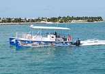 Key West Shark and Wildlife Catamaran Tour