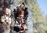 Flagstaff Extreme Adventure Course-Kids Course