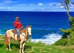 Maui Horseback-Waterfall and Ocean Tour