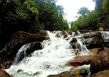 Hot Spots at Kanneliya Rainforest
