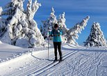 Guided cross-country skiing week in Lillehammer, 6 days