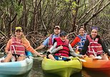 Mangrove Estuary Preserve Kayak Adventure Tour