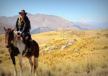 Half-Day Horseback Riding in Cusco