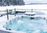 Arctic Forest Sauna and Hot Tub with Northern Lights