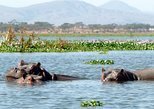 1 DAY TOUR LAKE NAIVASHA AND HELL'S GATE FROM NAIROBI