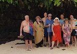 Namua Turtle Island and Eastern Upolu Tour