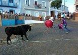 Traditional Bullrun