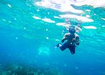 All Inclusive Reef Snorkel & Shopping