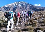 7 Day Ultimate Kilimanjaro Climbing - Machame Route