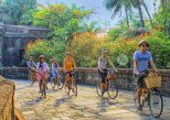 Bambike Ecotours: Express Tour (Bamboo bicycle tours)