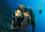 scuba diving by U Can Travel