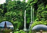 Private Tour Sekumpul Waterfall Combination Beratan Temple & Twin Lakes