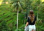 Half Day UBUD: Monkey Forest, Rice Terrace, Coffee Plantation & Swing