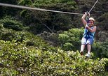 Apaneca Zipline Adventure with Optional Flowers Route Tour