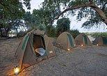 Chobe National Park Camping Safari From Victoria Falls (2 Days and 1 Night)