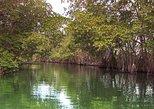 Black River Safari & Ys Falls