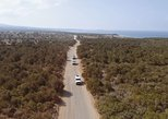 Cruise and 4X4 Safari Tour at Akamas Peninsula from Limassol