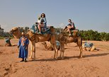 Camel ride at the sunset in Agadir