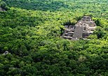 Archaelogical Site of Calakmul and Biosphere Day Trip from Villahermosa